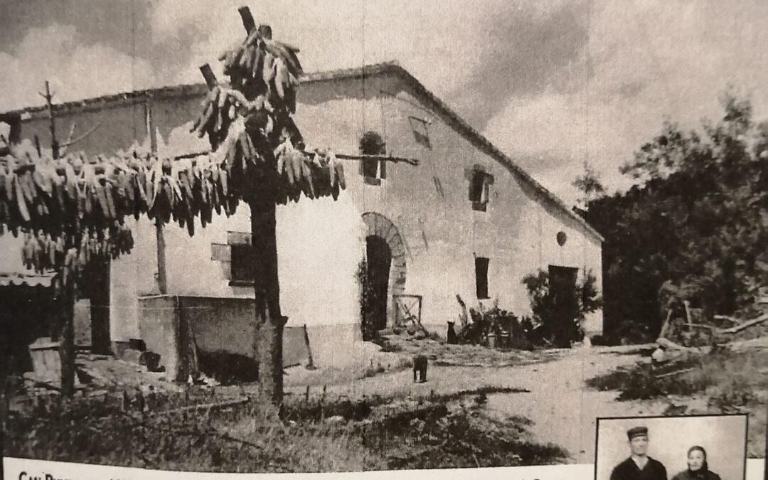 La masia de Can Puigdemir